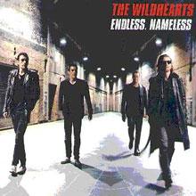 <i>Endless, Nameless</i> (album) 1997 studio album by The Wildhearts