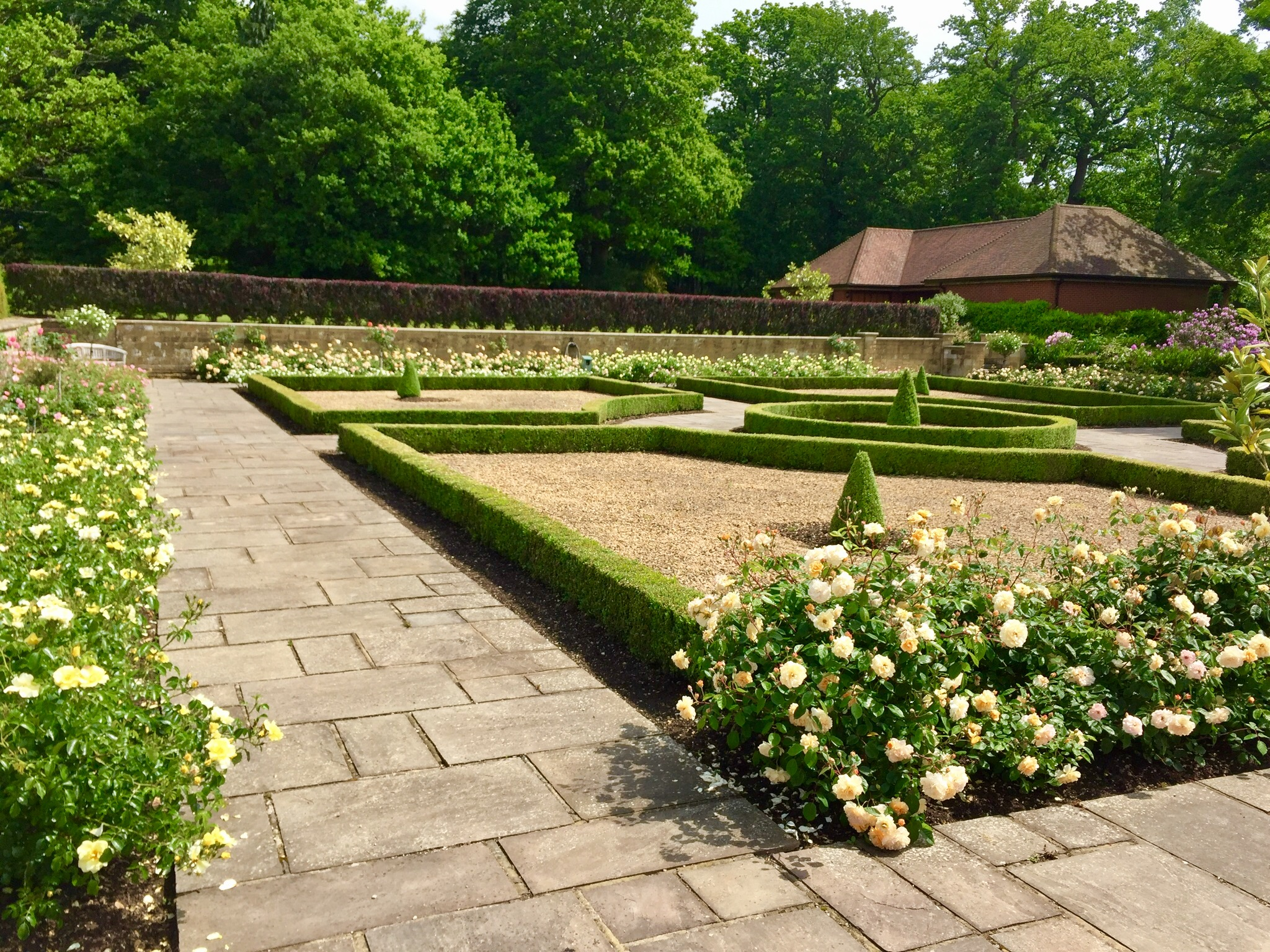 The rose garden at Swaylands