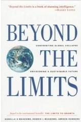 Couverture du livre «beyond the limits»