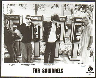For Squirrels Photo