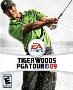 <i>Tiger Woods PGA Tour 09</i> 2008 video game