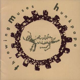 <i>Hunkpapa</i> (album) 1989 studio album by Throwing Muses