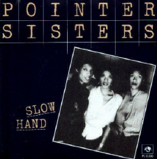 Slow Hand 1981 single by The Pointer Sisters