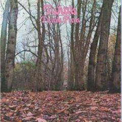 Twink - Think Pink (1970)  Twink_Think_Pink
