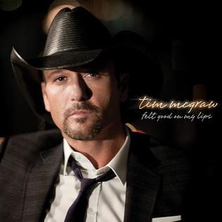 Felt Good on My Lips single by Tim McGraw