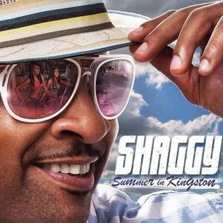 <i>Summer in Kingston</i> 2011 studio album by Shaggy
