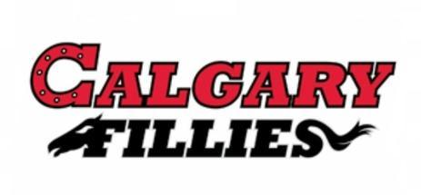 Calgary Fillies Wikipedia