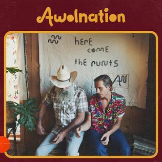 AWOLNATION - Seven Sticks of Dynamite 一个是V社的老朋友的摇滚乐队
