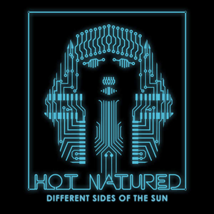 <i>Different Sides of the Sun</i> 2013 studio album by Hot Natured