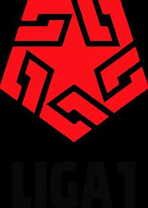 Peruvian Primera División Sports league