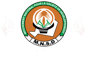 National Movement for the Development of Society Political party in Niger