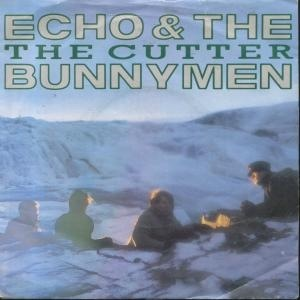 The Cutter (song) 1983 single by Echo & the Bunnymen