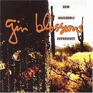 <i>New Miserable Experience</i> 1992 studio album by Gin Blossoms
