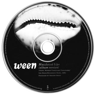 Ween - Mutilated Lips [Lyrics] - YouTube