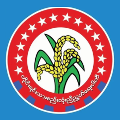 National Unity Party (Myanmar) Political party in Myanmar