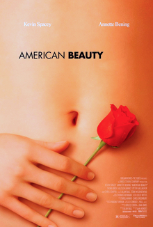 Poster of a woman's stomach with her hand holding a red rose against it.