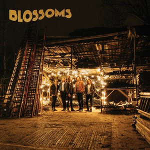 Blossoms album.jpg