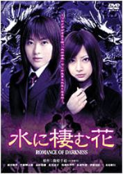 Romance of Darkness (2006)