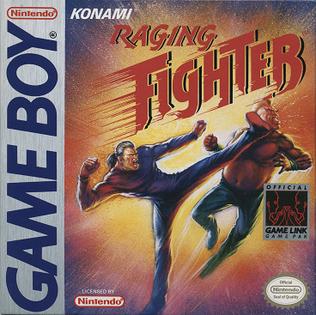 <i>Raging Fighter</i> 1993 video game