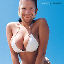 Cover image of song Windowlicker by Aphex Twin