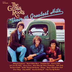 <i>Their 16 Greatest Hits</i> 1971 greatest hits album by The Grass Roots