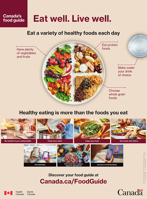 Is the 2019 Canada's Food Guide Snapshot nutritionally ...