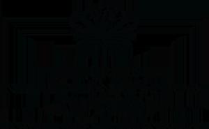 BIS Abu Dhabi logo