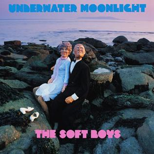 Image result for soft boys underwater moonlight