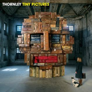 <i>Tiny Pictures</i> 2009 studio album by Thornley