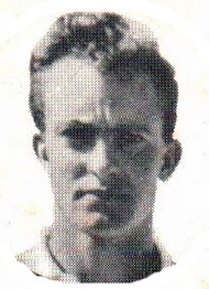 Clive Halse South African cricketer