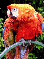 RGB 24bits paletra provaĵbildo 9bpp MD.png