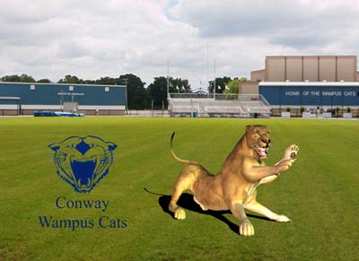 Picture of the conway high school quot wampus cat quot a six legged cat with