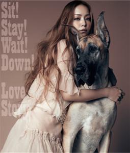 <i>Sit! Stay! Wait! Down!/Love Story</i> 2011 EP by Namie Amuro
