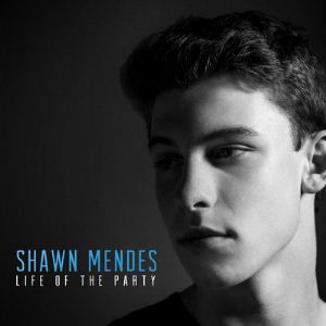 Shawn Mendes - Life of the Party (studio acapella)