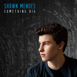Shawn Mendes — Something Big (studio acapella)