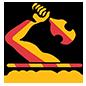 Waikato (National Provincial Championship)