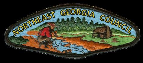 northeast georgia council wikipedia