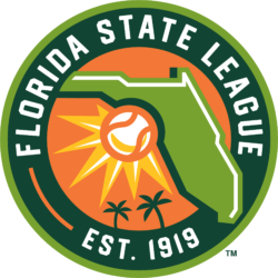 Image result for florida state league logo