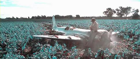Hughes crashes in a field; screenshot showing the simulated bipack color film used in scenes depicting events before 1935. TheAviator2004Colours.jpg