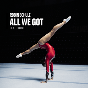 All We Got (Robin Schulz song) 2021 single by Robin Schulz featuring Kiddo