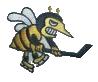 "Thunder Bay Hornets former Canadian Junior ""A"" team"