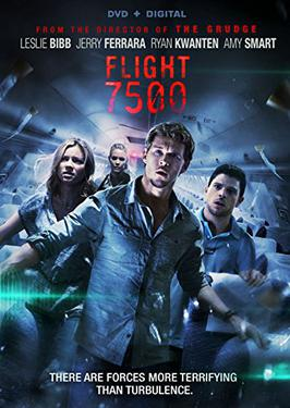 Flight 7500 - Wikipedia