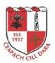 Cappagh GAA gaelic games club in County Kildare, Ireland