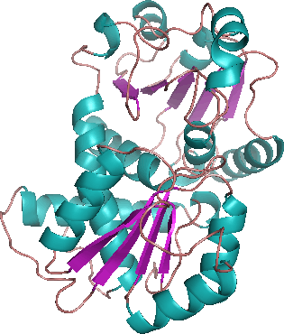 ornithine transcarbamylase deficiency The otc gene is associated with x-linked ornithine transcarbamylase (otc) deficiency (medgen uid: 75692.