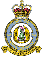 No. 19 Squadron RAF Defunct flying squadron of the Royal Air Force