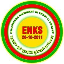 Syrian Kurdish political organization