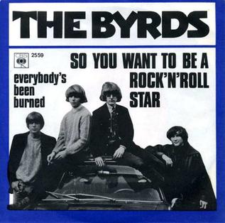 So You Want to Be a Rock 'n' Roll Star
