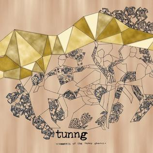 <i>Comments of the Inner Chorus</i> album by Tunng