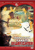 Karate Bearfighter poster.jpg