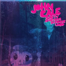 <i>Shifty Adventures in Nookie Wood</i> 2012 studio album by John Cale